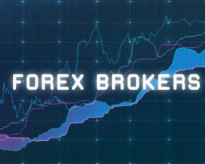 forex broker type